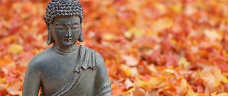 Höstens yogakurser – Kursstart 27-30:e oktober!